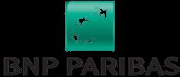 bnp logo